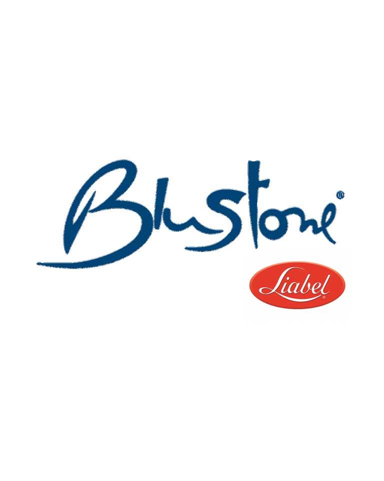 Logo BluStone