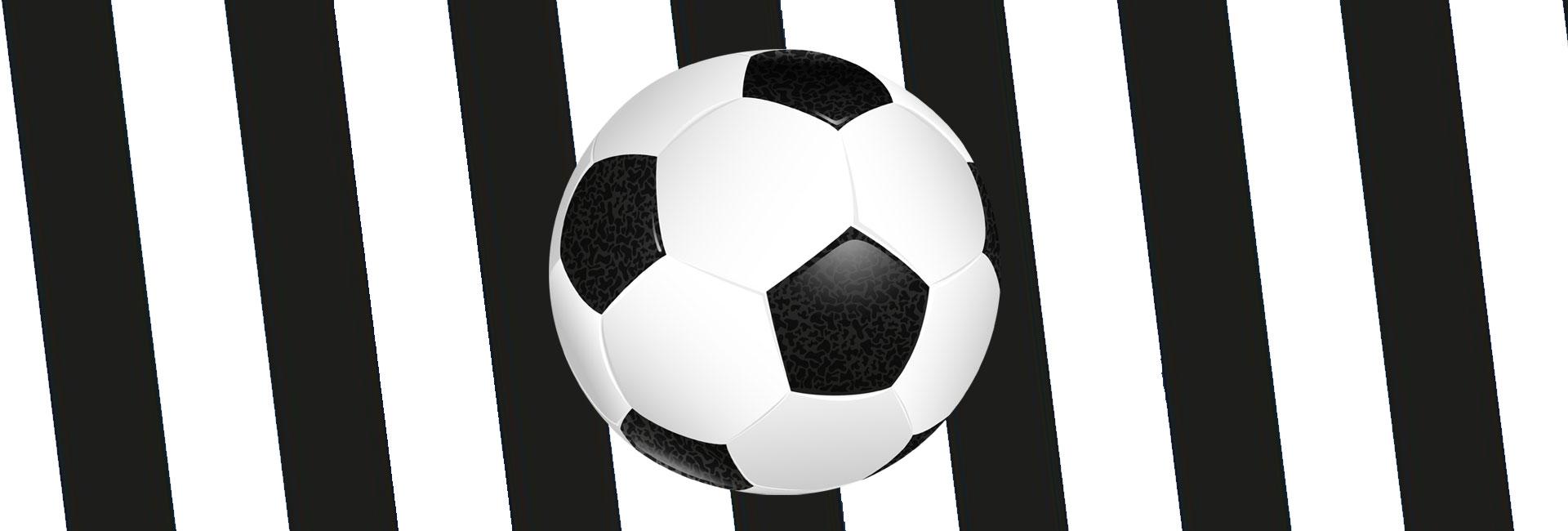 Copertina di Udinese